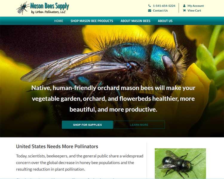 mason bees supply